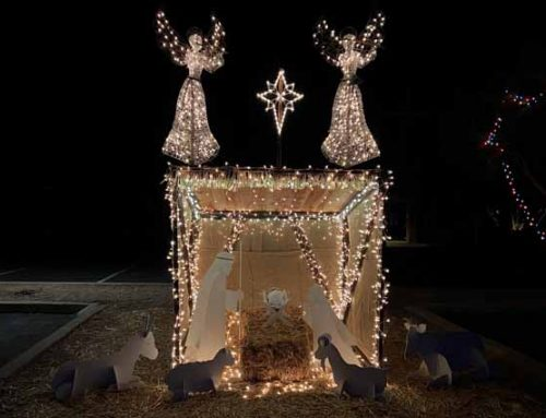 Nativity Scene and Holiday Light Display at Sedona UMC